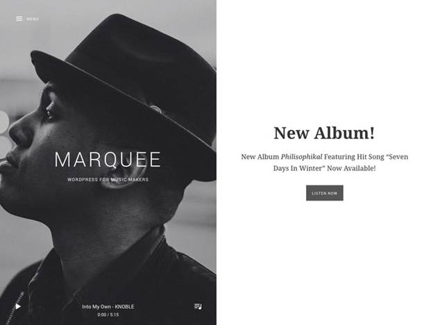 Marquee-Top WordPress Themes for Business and Entrepreneur