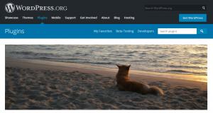 Best Free WordPress Email Newsletter Plugins Free Download-ALO-easymail-newsletter