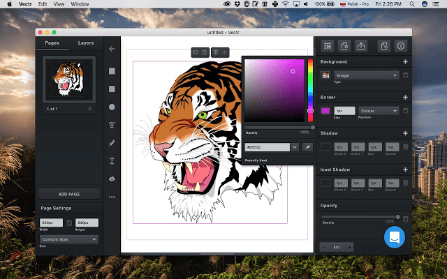 10+ Best Graphic Design Software for Beginners Free Download-Vectr