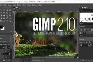 10+ Best Graphic Design Software for Beginners Free Download-Gimp