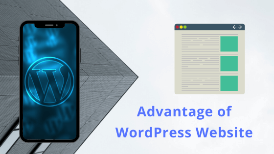 The 9 Advantages of Using WordPress for Developing Business Website