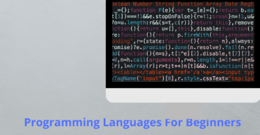 Top Programming Languages to Learn For Beginners