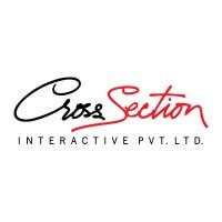 Cross Section Interactive-SEO Company in Noida